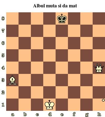 Diagrama 1 – Mat intr-o mutare